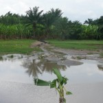 How You Can Prevent Occurrence of Waterlogging in Agricultural Lands:  Training Notes by Prof. Bancy Mati