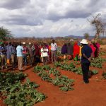Embracing Technology Key to unlocking Potential in Kenya's Arid Areas