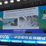 WARREC Director Makes a Presentation on Water and SRI in Africa at the International Rice Congress in Changsha, China