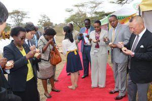 Council Members, University Management and Nissin Officials have a taste of the JKUAT Nissin Noddles