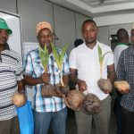 Experts crack the coconut value chain woes to boost productivity