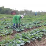 Student Empowered to Leverage on Agro-Ecology to Boost Youth Employment